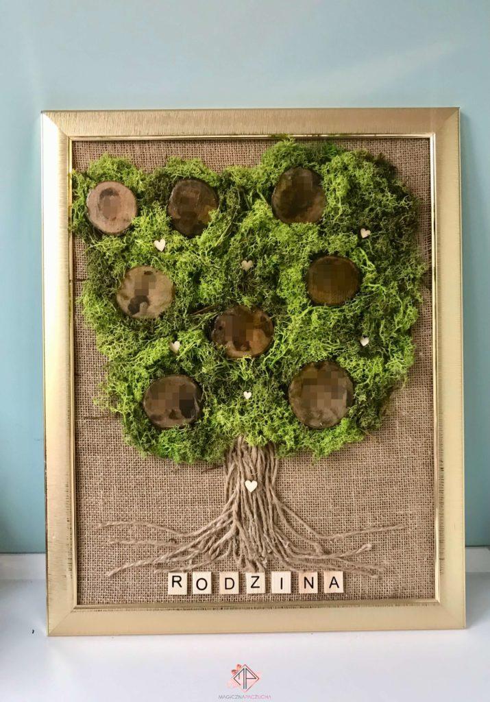 drzewo-genealogiczne